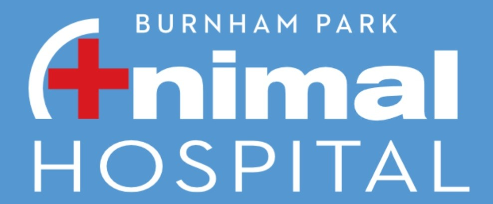 Burnham Park Animal Hospital